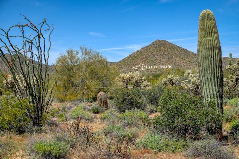 Ο δείκτης αέρα του Phoenix στοκ φωτογραφία με δικαίωμα ελεύθερης χρήσης