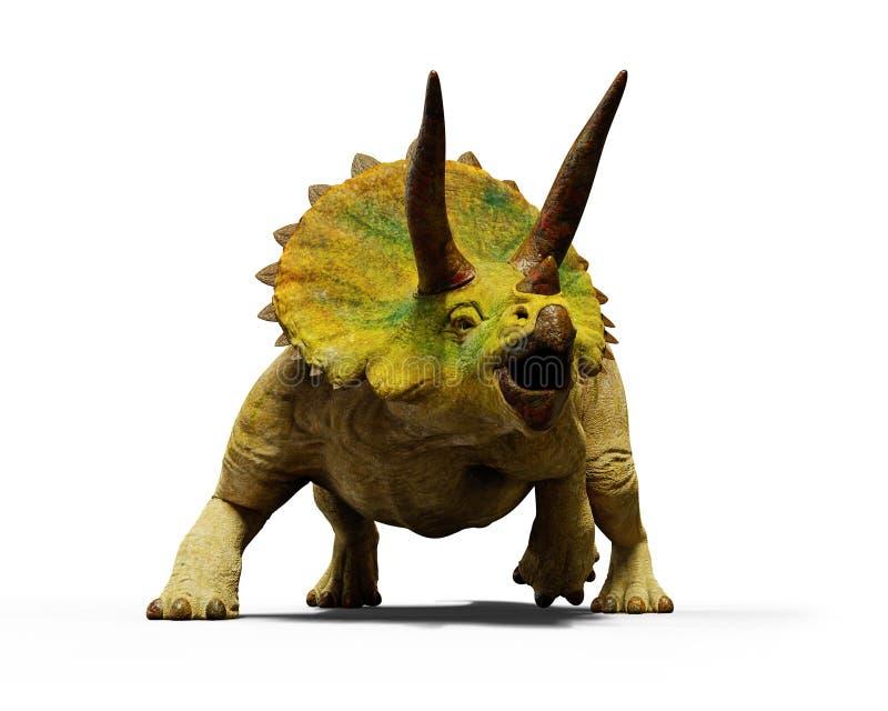 Ο δεινόσαυρος horridus Triceratops, εκλείψας προϊστορικός ζωικός τρισδιάστατος δίνει απομονωμένος με τη σκιά στο άσπρο υπόβαθρο ελεύθερη απεικόνιση δικαιώματος