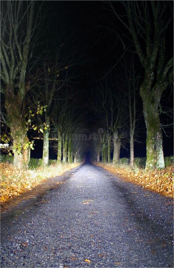 Ο δρόμος αμμοχάλικου για να πάει με την ελπίδα αυτό θα είναι καλύτερος στοκ φωτογραφία με δικαίωμα ελεύθερης χρήσης