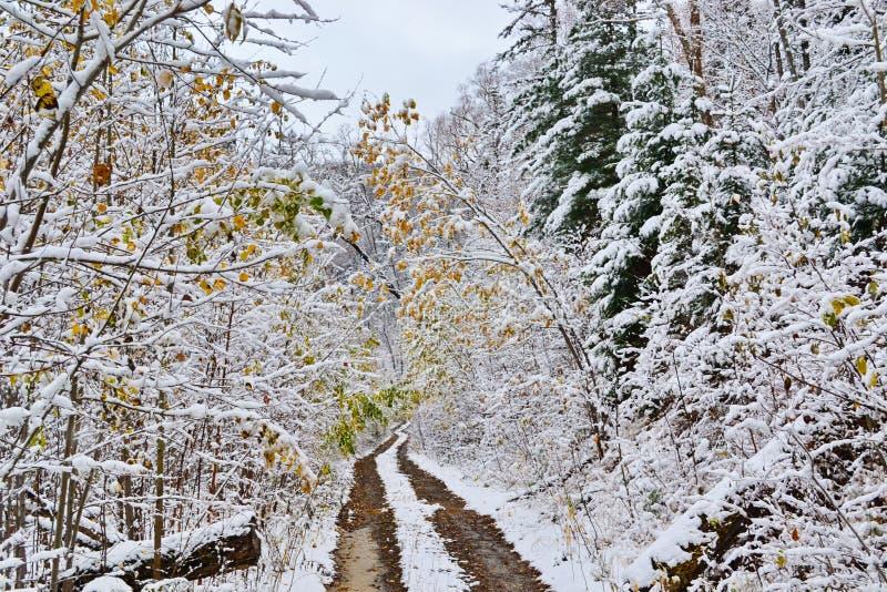 Ο δρόμος σε μια αξιοπρέπεια σε Claus στοκ φωτογραφία με δικαίωμα ελεύθερης χρήσης
