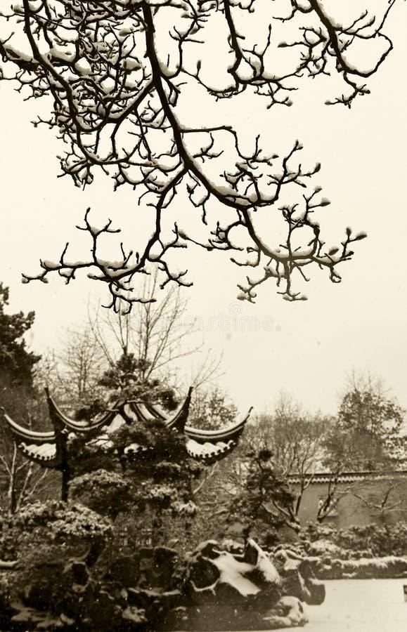 Ο Δρ Κλασσικός κινεζικός κήπος yat-Sen ήλιων το χειμώνα στοκ εικόνες με δικαίωμα ελεύθερης χρήσης