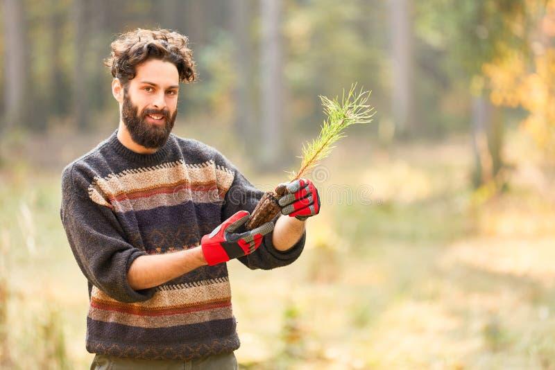 Ο εκπαιδευόμενος Förster φυτεύει τα σπορόφυτα για την ικανότητα υποστήριξης στοκ φωτογραφία με δικαίωμα ελεύθερης χρήσης