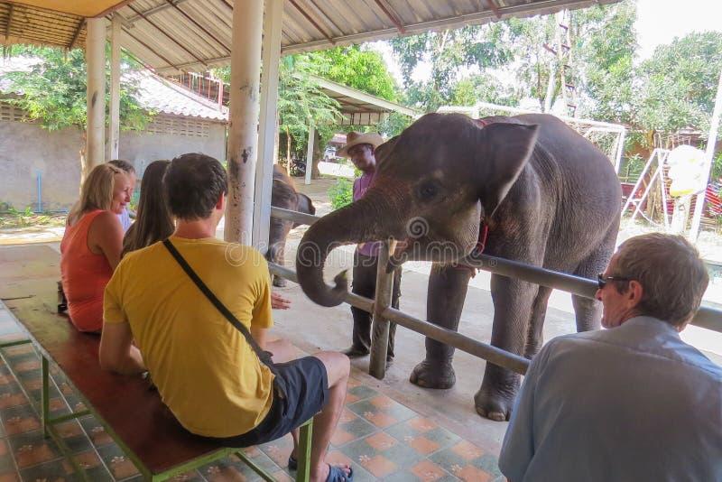 Ο ελέφαντας επικοινωνεί με τη συνεδρίαση ακροατηρίων στους πάγκους στοκ φωτογραφία με δικαίωμα ελεύθερης χρήσης