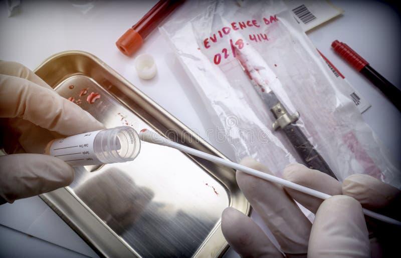Ο επιστήμονας εξετάζει τις δοκιμές του τέμνοντος όπλου του εγκλήματος σε ένα εργαστήριο στοκ εικόνα