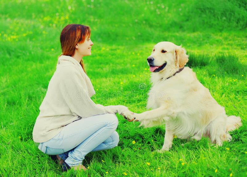 Ο ευτυχής ιδιοκτήτης γυναικών εκπαιδεύει το χρυσό Retriever της σκυλί στη χλόη και δίνει το πόδι στο χέρι στοκ εικόνες με δικαίωμα ελεύθερης χρήσης