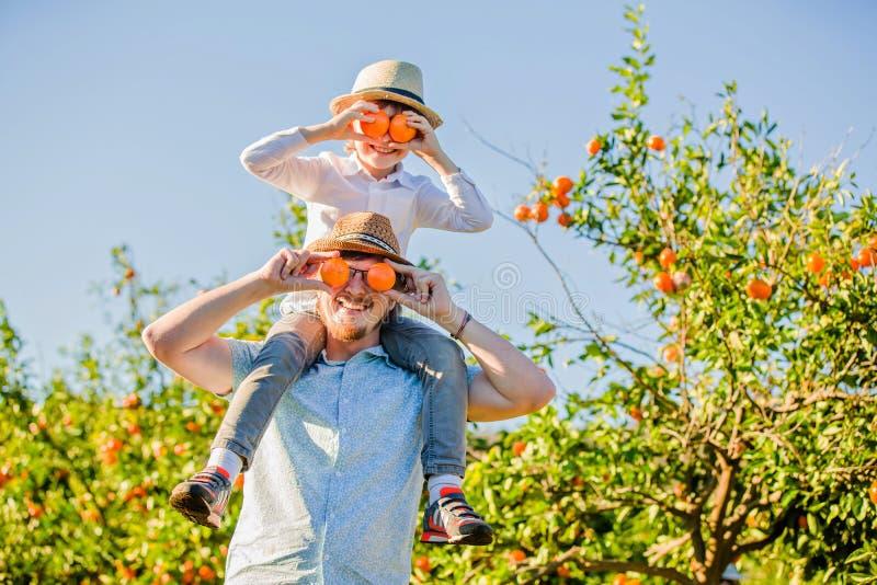 Ο ευτυχής πατέρας με το νέο γιο του έχει τη διασκέδαση στα εσπεριδοειδή στοκ φωτογραφία