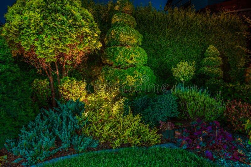 Οδηγημένος κήπος ανάβοντας φωτισμός στοκ εικόνες