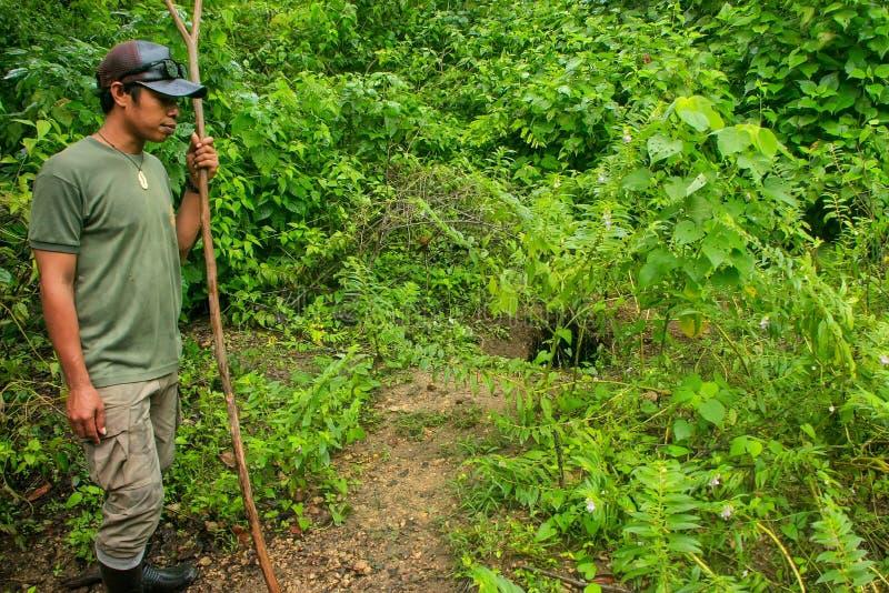 Οδηγός που παρουσιάζει τρύπα που γίνεται από το δράκο στο εθνικό πάρκο Komodo, Nusa στοκ φωτογραφίες