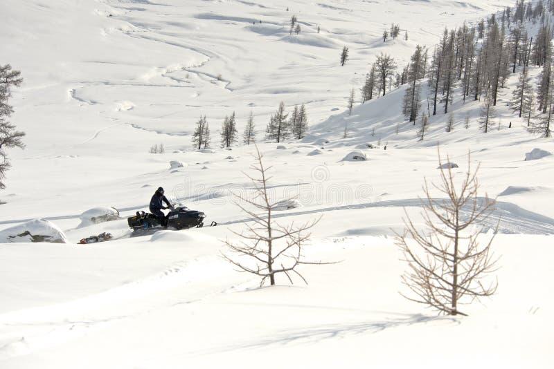Οδηγώντας αθλητικό όχημα για το χιόνι ατόμων σε μια ηλιόλουστη ημέρα στοκ εικόνες με δικαίωμα ελεύθερης χρήσης
