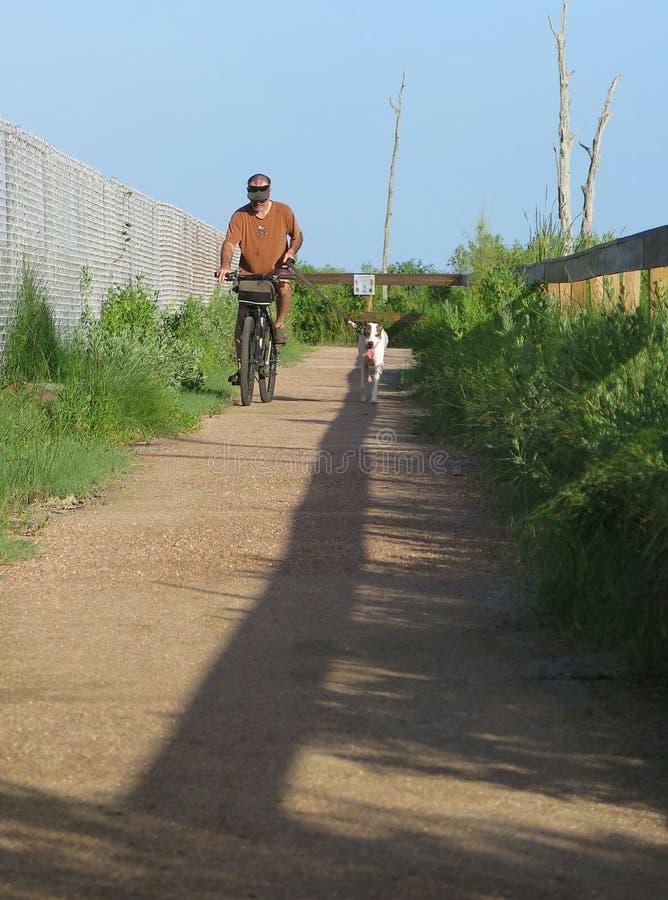 Οδηγώντας ποδήλατο βουνών ατόμων με το σκυλί του στοκ φωτογραφία με δικαίωμα ελεύθερης χρήσης