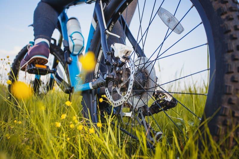 Οδηγώντας ποδήλατο βουνών ποδηλατών στο λιβάδι στοκ φωτογραφίες