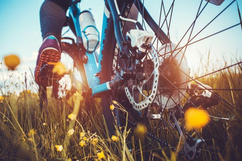 Οδηγώντας ποδήλατο βουνών ποδηλατών στο λιβάδι στοκ φωτογραφία με δικαίωμα ελεύθερης χρήσης