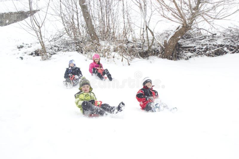 οδηγώντας χειμώνας ελκήθρων διασκέδασης στοκ εικόνα με δικαίωμα ελεύθερης χρήσης