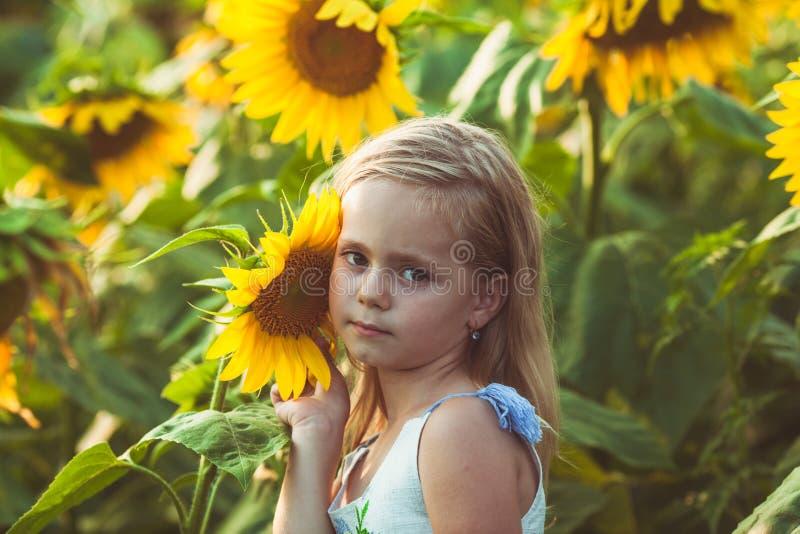 Ο ηλίανθος είναι φίλος για το κορίτσι στοκ φωτογραφία με δικαίωμα ελεύθερης χρήσης