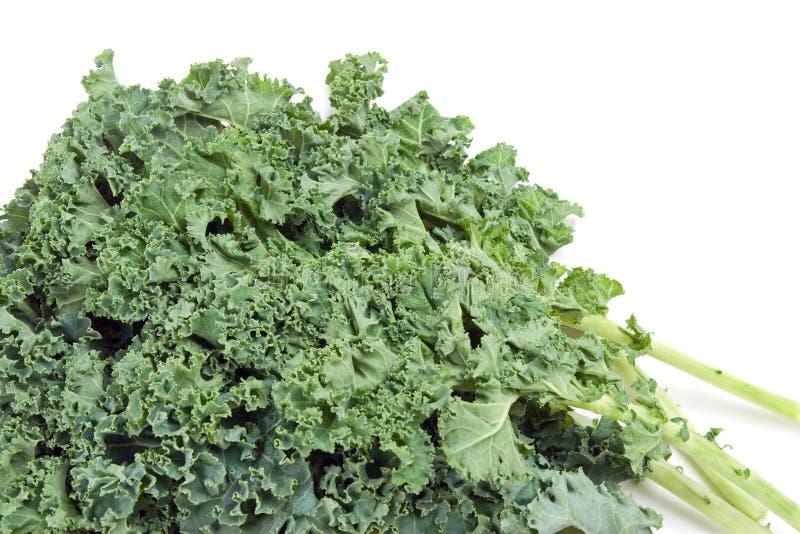 Ο θρεπτικός Kale στοκ εικόνα