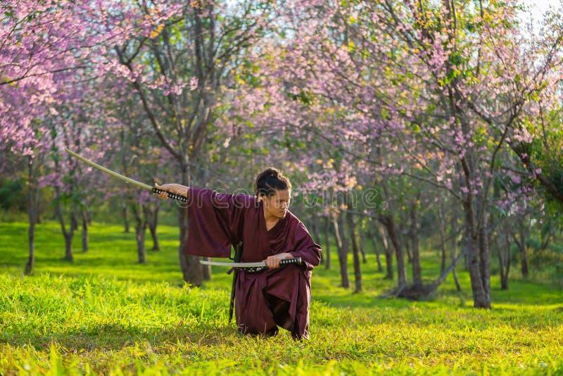 Ο ιαπωνικός Σαμουράι πιάνει το ξίφος, προετοιμαμένος να παλεψει στοκ φωτογραφίες με δικαίωμα ελεύθερης χρήσης
