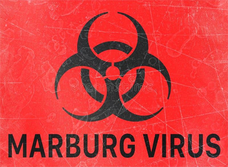 Ο ιός Marburg, biohazards, αναφέρεται στις βιολογικές ουσίες που αποτελούν απειλή για την υγεία των οργανισμών διαβίωσης, ιοί απεικόνιση αποθεμάτων
