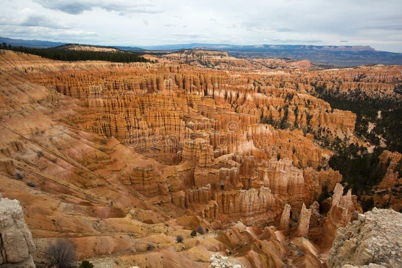 Ο κέδρος σπάζει τους geologycal σχηματισμούς στο Utah ΗΠΑ στοκ φωτογραφία με δικαίωμα ελεύθερης χρήσης
