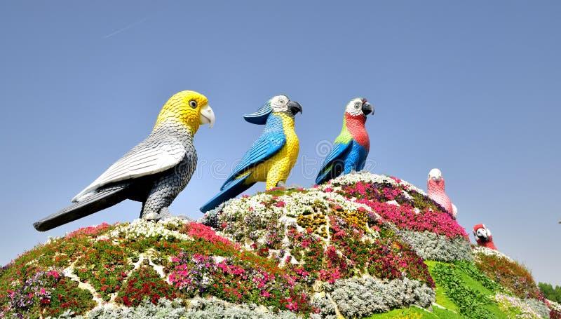 Ο κήπος θαύματος του Ντουμπάι στοκ φωτογραφία