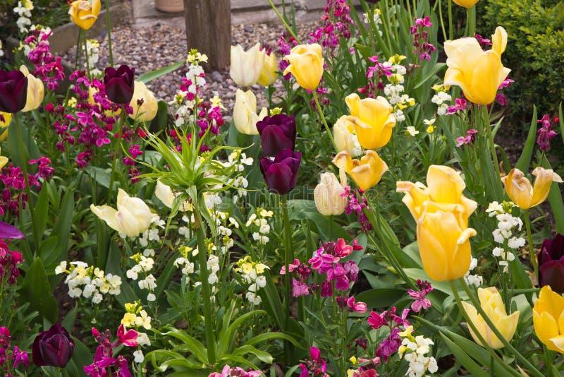 Ο κήπος κατά τη διάρκεια του Μαΐου στο σπίτι του William Shakespeare στοκ εικόνα