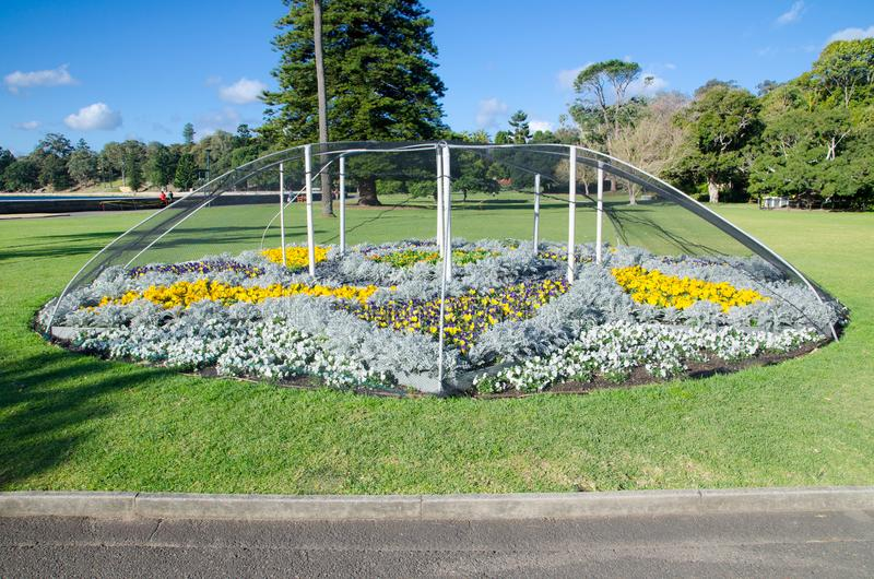 Ο κήπος λουλουδιών έχει προστατεύσει από την κάλυψη επάνω με την αλιεία με δίχτυα πουλιών στοκ εικόνες