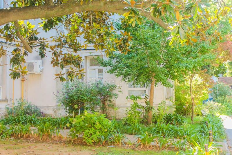 Ο κήπος σε ένα σπίτι του Vintage στοκ φωτογραφία με δικαίωμα ελεύθερης χρήσης