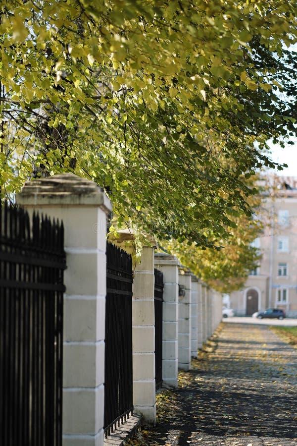 Ο κήπος φθινοπώρου με πολλά δέντρα και το τούβλο περιφράζουν μέσα τις ευρωπαϊκές πόλεις στοκ φωτογραφία με δικαίωμα ελεύθερης χρήσης