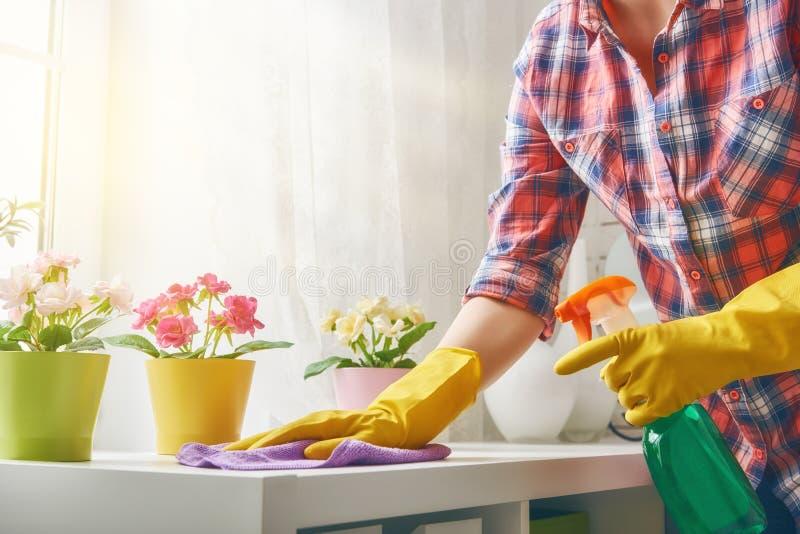 ο καθαρισμός κάνει τη γυν& στοκ εικόνες με δικαίωμα ελεύθερης χρήσης