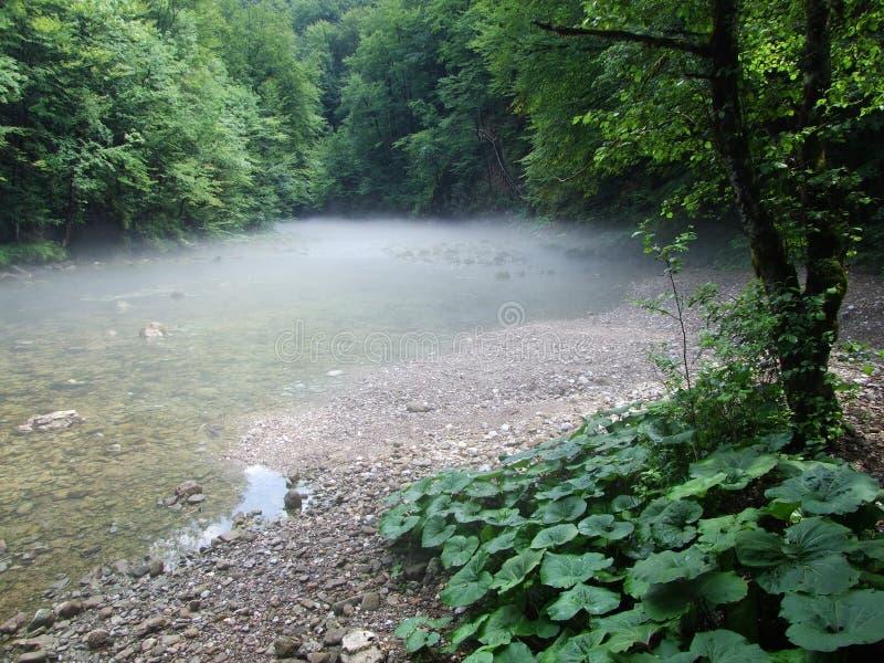 Ο καθαρός ποταμός βουνών ρέει ομαλά στοκ φωτογραφία με δικαίωμα ελεύθερης χρήσης