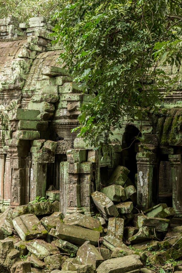 Ο και καταρρεσμένος ναός TA Prohm στο αρχαιολογικό πάρκο Angkor, Siem συγκεντρώνει, Καμπότζη στοκ φωτογραφίες