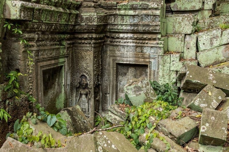 Ο και καταρρεσμένος ναός TA Prohm στο αρχαιολογικό πάρκο Angkor, Siem συγκεντρώνει, Καμπότζη στοκ εικόνα
