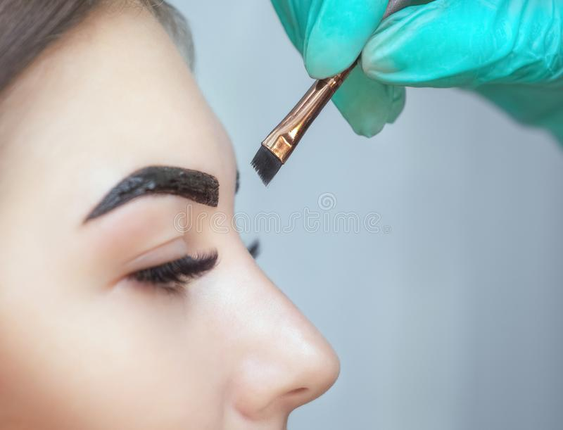 Ο καλλιτέχνης Makeup εφαρμόζει henna χρωμάτων στα φρύδια σε ένα σαλόνι ομορφιάς στοκ εικόνα