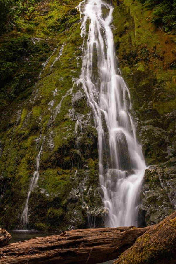 Ο καταρράκτης Marymere στο ολυμπιακό εθνικό πάρκο, πολιτεία της Washington, ΗΠΑ, σε μια μακροχρόνια έκθεση που προσθέτει θόλωσε τ στοκ φωτογραφία