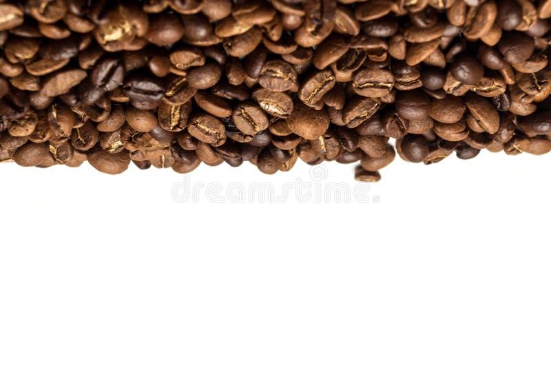 ο καφές φασολιών ανασκόπησης απομόνωσε το ψημένο λευκό σκιών στοκ εικόνες με δικαίωμα ελεύθερης χρήσης