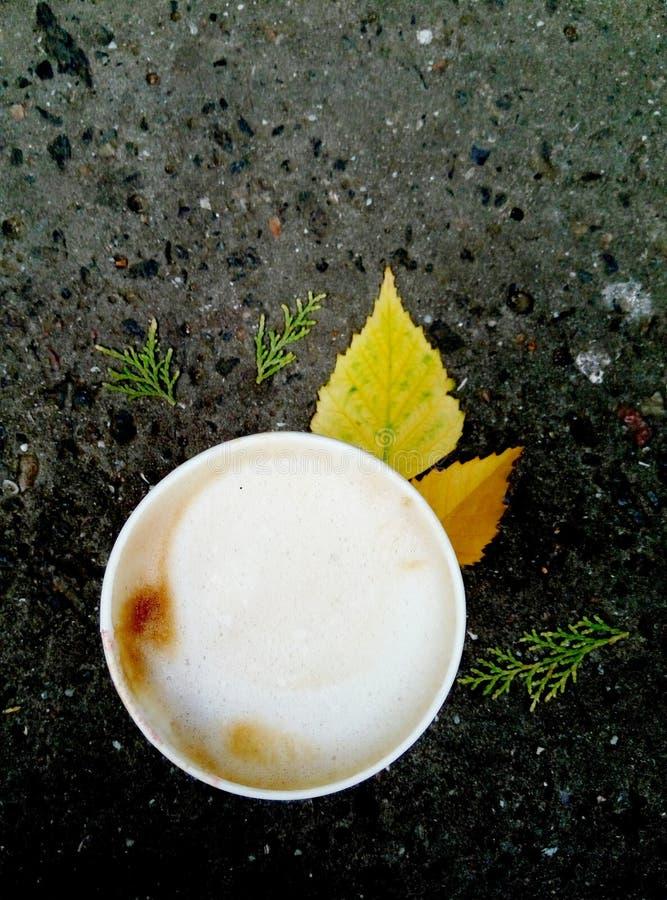 Ο καφές φθινοπώρου είναι πλήρης των προσδοκιών της αλλαγής στοκ εικόνες