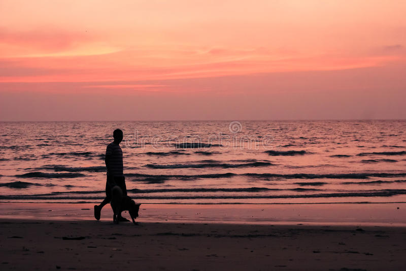 Ο καλύτερος φίλος μου στην παραλία στοκ φωτογραφία με δικαίωμα ελεύθερης χρήσης