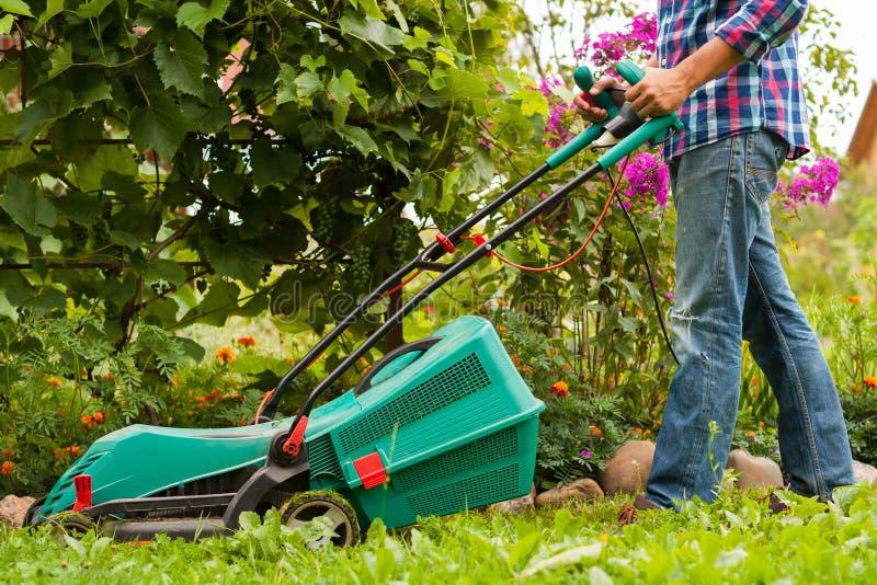 Ο κηπουρός κόβει τη χλόη με το θεριστή χορτοταπήτων στον κήπο στοκ εικόνες