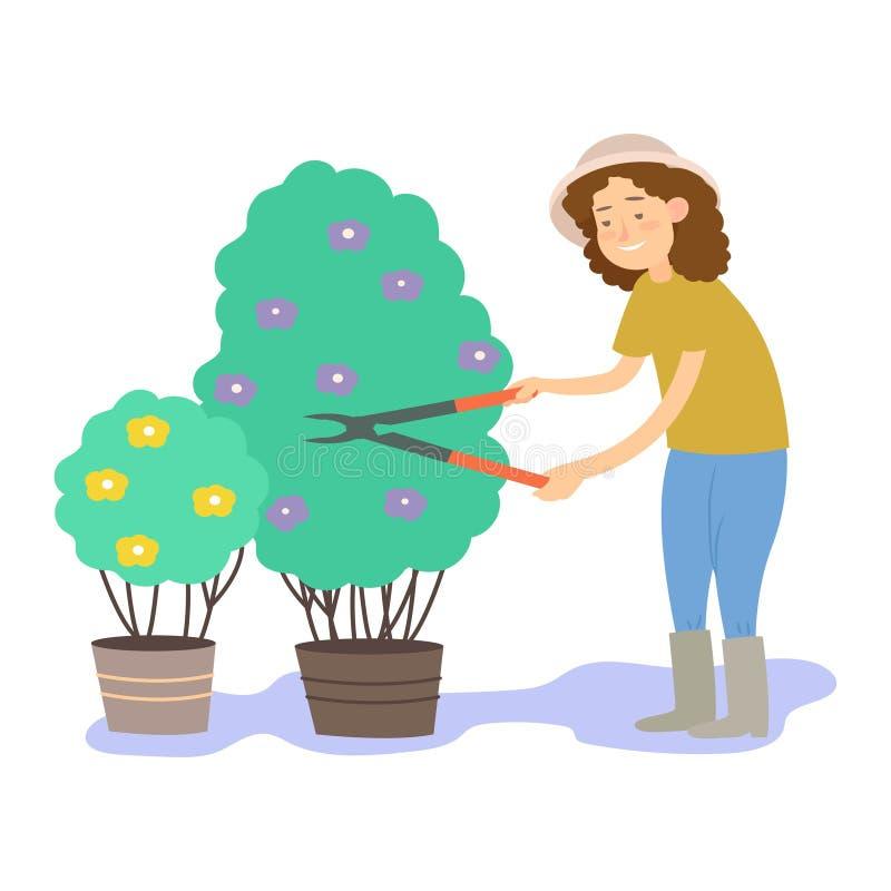 Ο κηπουρός κόβει τους θάμνους Διανυσματική απεικόνιση που απομονώνεται στην άσπρη ανασκόπηση απεικόνιση αποθεμάτων