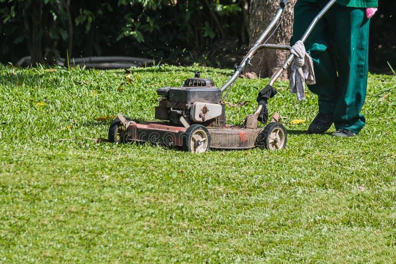 Ο κηπουρός χρησιμοποιεί έναν θεριστή χορτοταπήτων στοκ φωτογραφία με δικαίωμα ελεύθερης χρήσης