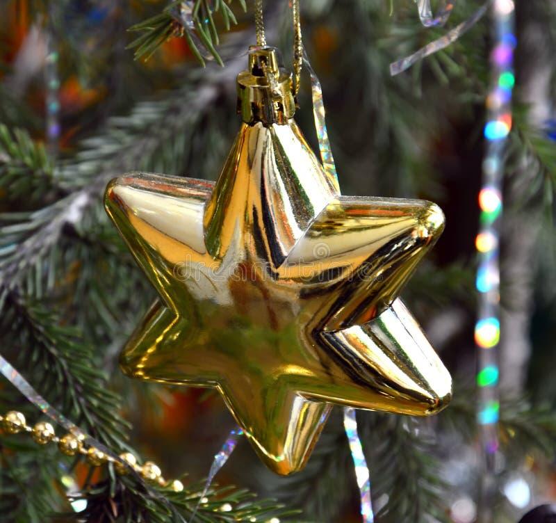 Ο κλάδος του χριστουγεννιάτικου δέντρου είναι διακοσμημένος με το χρυσό αστέρι στοκ εικόνα με δικαίωμα ελεύθερης χρήσης