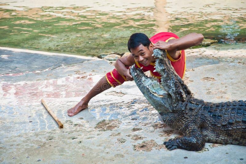 ο κροκόδειλος εμφανίζει στοκ φωτογραφία με δικαίωμα ελεύθερης χρήσης