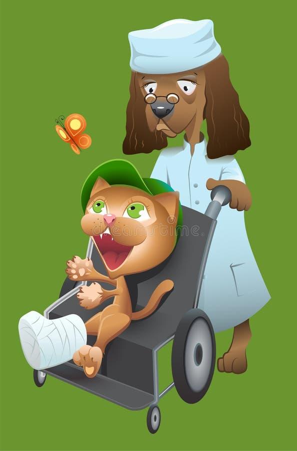 Ο κτηνίατρος σκυλιών φέρνει μια γάτα σε μια αναπηρική καρέκλα απεικόνιση αποθεμάτων