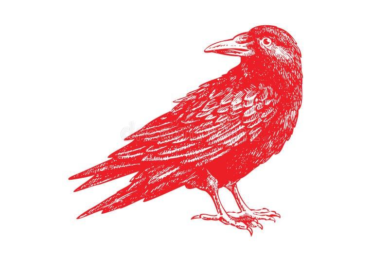 Ο κόκκινος κόρακας θέτει απεικόνιση αποθεμάτων