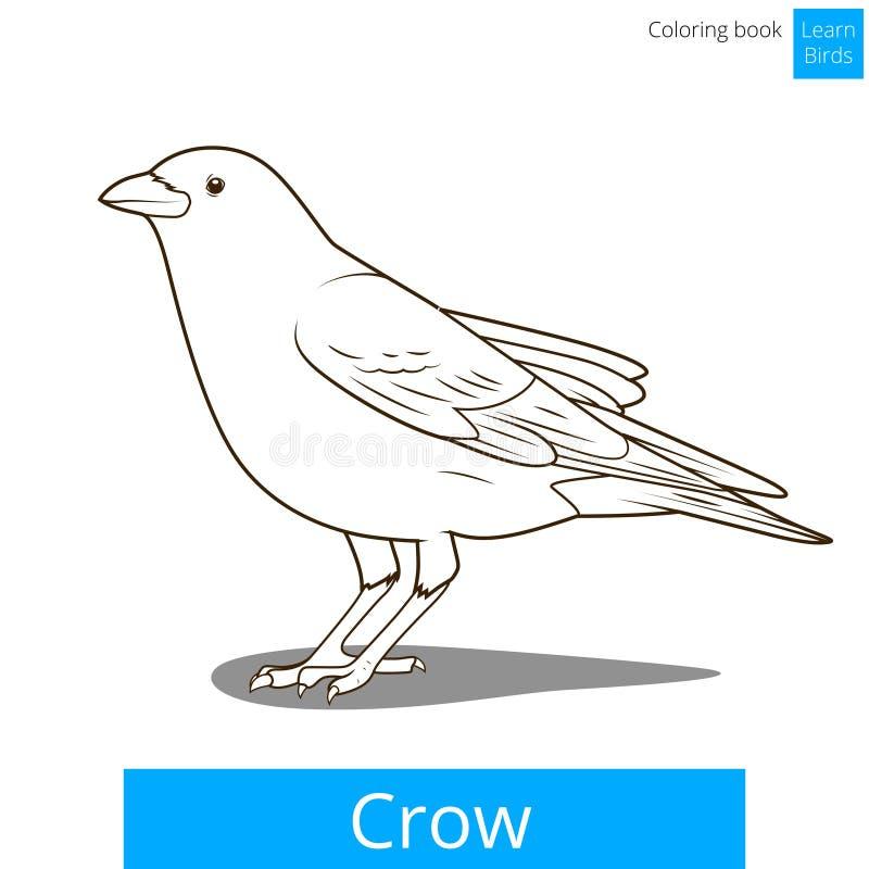 Ο κόρακας μαθαίνει τα πουλιά χρωματίζοντας το διάνυσμα βιβλίων απεικόνιση αποθεμάτων