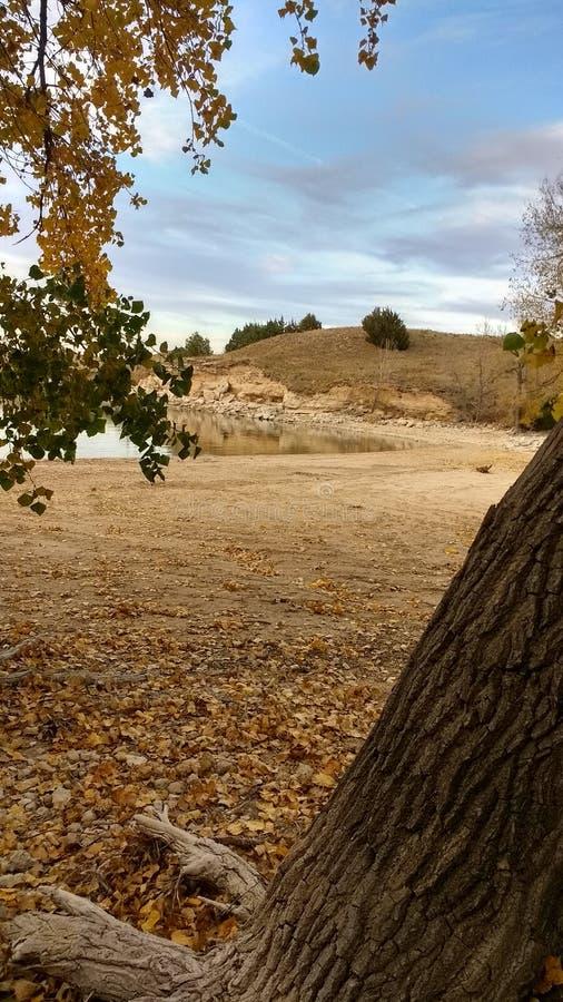 Ο κόλπος της Νεμπράσκας πτώσης άμμου λιμνών λικνίζει τα δέντρα στοκ φωτογραφία με δικαίωμα ελεύθερης χρήσης