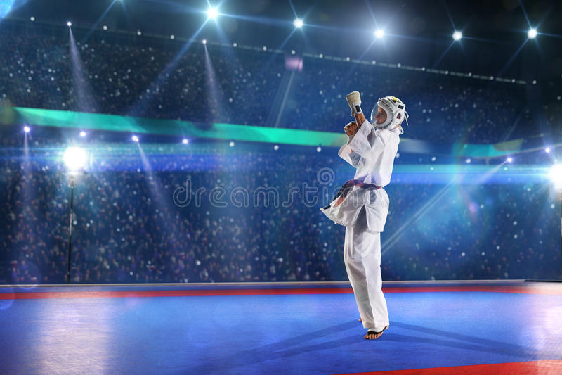 Ο μαχητής Kudo επιλύει στο μεγάλο χώρο στοκ εικόνα