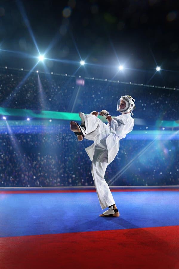 Ο μαχητής Kudo επιλύει στο μεγάλο χώρο στοκ φωτογραφίες με δικαίωμα ελεύθερης χρήσης