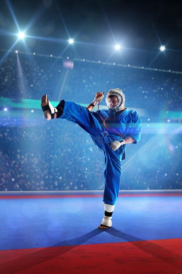 Ο μαχητής Kudo επιλύει στο μεγάλο χώρο στοκ εικόνα με δικαίωμα ελεύθερης χρήσης