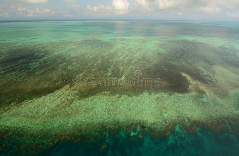 Ο μεγάλος σκόπελος εμποδίων Λιμένας Ντάγκλας Queensland Αυστραλία στοκ εικόνες