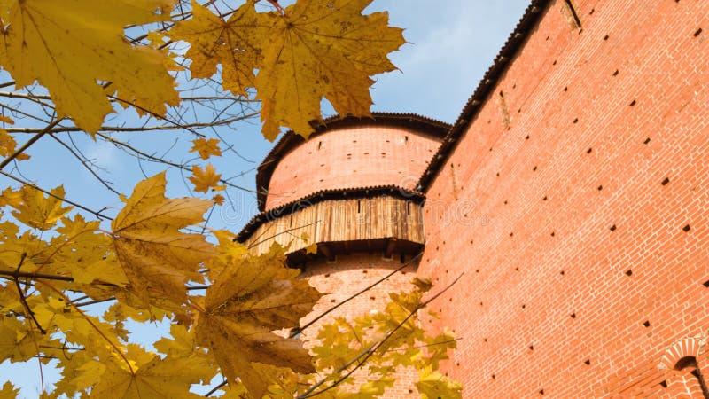 Ο μεγάλος στρογγυλός πύργος του κάστρου Turaida και το φωτεινό ζωηρό κίτρινο φύλλωμα ενός δέντρου σφενδάμνου δίπλα στο κάστρο στοκ φωτογραφία με δικαίωμα ελεύθερης χρήσης